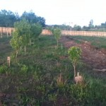 We Need Land in the Denver Area! You Can Help!