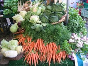 garden,gardens,community garden,food for people,kids gardens,grow food,vegetable gardens